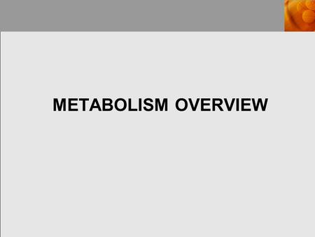 METABOLISM OVERVIEW. METABOLISM The sum of all reactions occurring in an organism, includes: catabolism, which are the reactions involved in the breakdown.