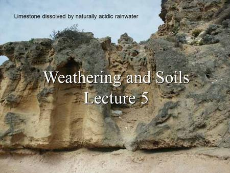 Weathering <strong>and</strong> <strong>Soils</strong> Lecture 5 Limestone dissolved by naturally acidic rainwater.