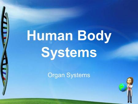 Human Body Systems Organ Systems. MAJOR FUNCTIONS: 1. Provide shape & support 2. Allows for movement 3.Protects tissue & organs 4.Stores certain minerals.