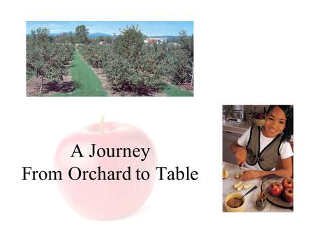 A Journey From Orchard to Table. The Journey from Orchard to Table Brought to you by: