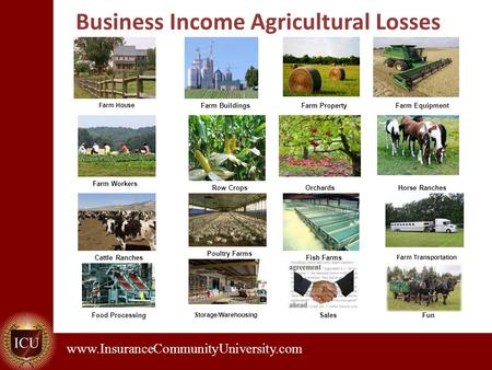 . www.InsuranceCommunityUniversity.com Business Income Agricultural Losses Farm House Farm BuildingsFarm PropertyFarm Equipment Farm Workers Row CropsOrchardsHorse.
