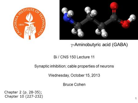 1 Bi / CNS 150 Lecture 11 Synaptic inhibition; cable properties of neurons Wednesday, October 15, 2013 Bruce Cohen Chapter 2 (p. 28-35); Chapter 10 (227-232)