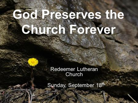 God Preserves the Church Forever Redeemer Lutheran Church Sunday, September 18 th.