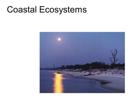 Coastal Ecosystems. The most important coastal systems are beaches and coastal dunes. These are important ecosystems in their own right, but also serve.