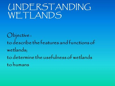 UNDERSTANDING WETLANDS Objective : to describe the features and functions of wetlands; to determine the usefulness of wetlands to humans.