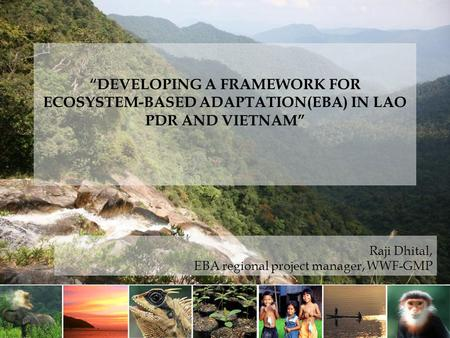 """DEVELOPING A FRAMEWORK FOR ECOSYSTEM-BASED ADAPTATION(EBA) IN LAO PDR AND VIETNAM"" Raji Dhital, EBA regional project manager, WWF-GMP."