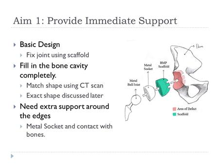 Aim 1: Provide Immediate Support  Basic Design  Fix joint using scaffold  Fill in the bone cavity completely.  Match shape using CT scan  Exact shape.