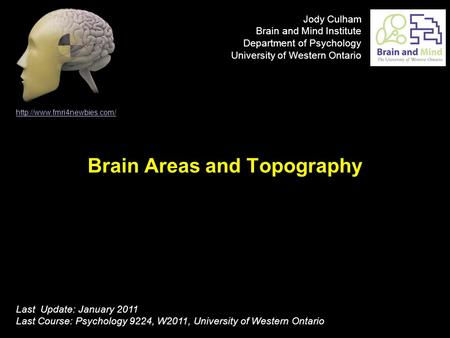 Brain Areas and Topography  Last Update: January 2011 Last Course: Psychology 9224, W2011, University of Western Ontario Jody.