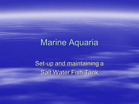Marine Aquaria Set-up and maintaining a Salt Water Fish Tank.