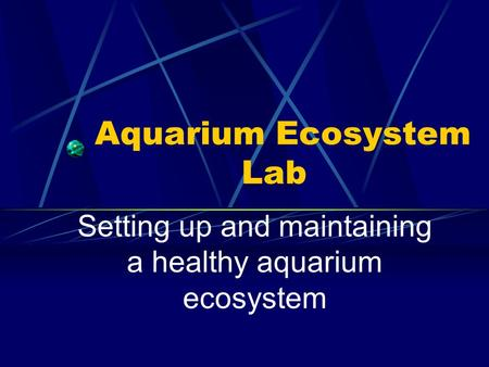 Aquarium Ecosystem Lab Setting up and maintaining a healthy aquarium ecosystem.
