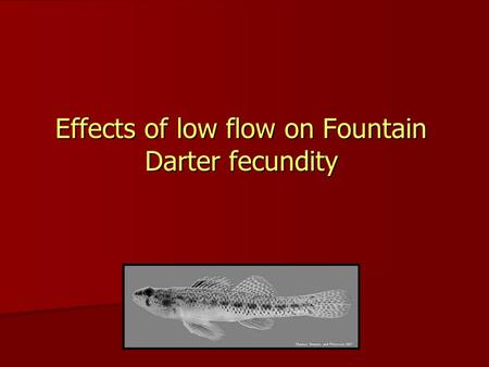 Effects of low flow on Fountain Darter fecundity.