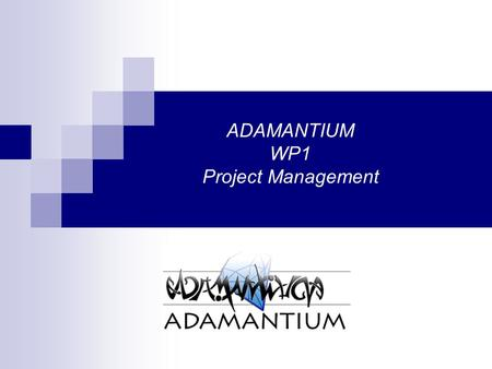 ADAMANTIUM WP1 Project Management. ADAMANTIUM ICT – 214751 Started on March of 2008 Duration 30 Months Partners:  NCSR Demokritos, Greece  University.