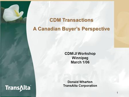 1 CDM Transactions A Canadian Buyer's Perspective CDM/JI Workshop Winnipeg March 1/06 Donald Wharton TransAlta Corporation.