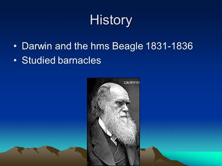 History Darwin and the hms Beagle 1831-1836 Studied barnacles.