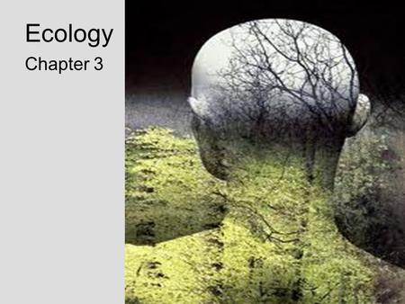 Ecology Chapter 3. Studying Our Living Planet –What is ecology? –Ecology is the scientific study of interactions among organisms and between organisms.