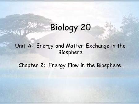 Biology 20 Unit A: Energy and Matter Exchange in the Biosphere Chapter 2: Energy Flow in the Biosphere.