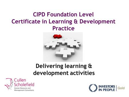 CIPD Foundation Level Certificate in Learning & Development Practice Delivering learning & development activities.