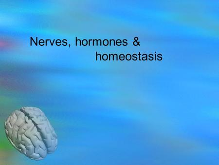 Nerves, hormones & homeostasis. 6.5.1 State that the nervous system consists of the central nervous system (CNS) and peripheral nerves, and is composed.