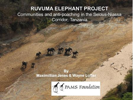 RUVUMA ELEPHANT PROJECT Communities and anti-poaching in the Selous-Niassa Corridor, Tanzania By Maximillian Jenes & Wayne Lotter.