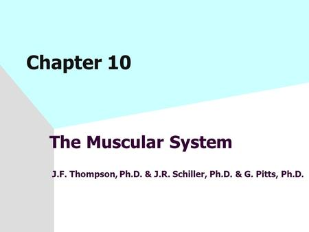 Chapter 10 The Muscular System J.F. Thompson, Ph.D. & J.R. Schiller, Ph.D. & G. Pitts, Ph.D.