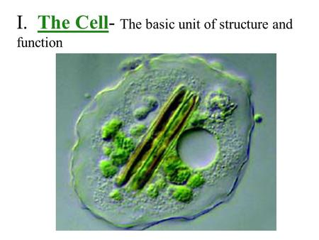 I. The Cell- The basic unit of structure and function.