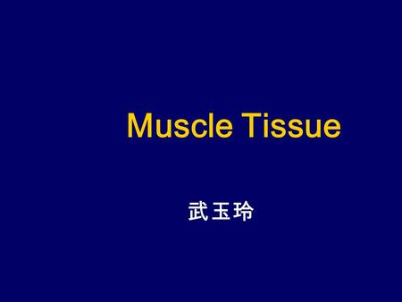 Muscle Tissue 武玉玲. Problems to solve 1.What are the general structures of skeletal muscle fiber? The general shape of skeletal muscle fiber is long cylindrical,1~40nm.