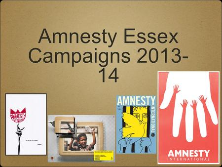 "Amnesty Essex Campaigns 2013- 14. Pussy Riot! Russian feminist punk rock band 3 members imprisoned in 2012, after ""Punk Prayer"", for ""hooliganism motivated."