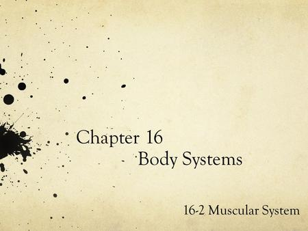 Chapter 16 Body Systems 16-2 Muscular System. Muscular System : Your muscular system is the group of structures that give your body the power to move.