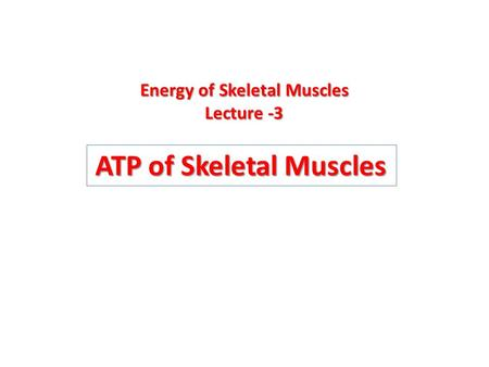 ATP of Skeletal Muscles Energy of Skeletal Muscles Lecture -3 Lecture -3.