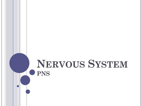 N ERVOUS S YSTEM PNS. N EURONS Nervous tissue contains masses of nerve cells called neurons. Specialized to react to physical and chemical changes. Transmit.