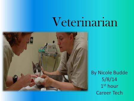 Veterinarian By Nicole Budde 5/8/14 1 st hour Career Tech.