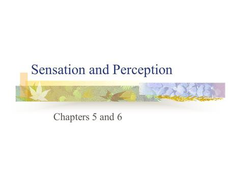 Sensation and Perception Chapters 5 and 6. Defining Sensation and Perception Sensation The detection of physical energy from our environment which we.