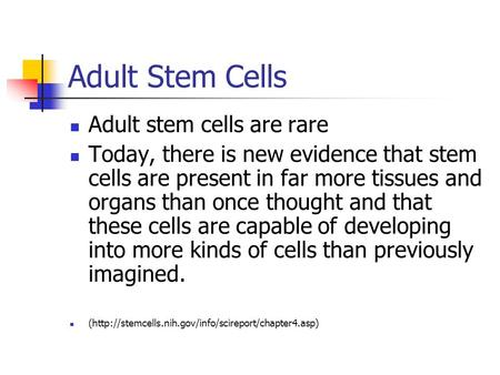 Adult Stem Cells Adult stem cells are rare Today, there is new evidence that stem cells are present in far more tissues and organs than once thought and.