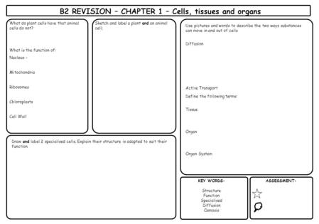 B2 REVISION – CHAPTER 1 – Cells, tissues and organs