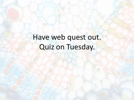 Have web quest out. Quiz on Tuesday.