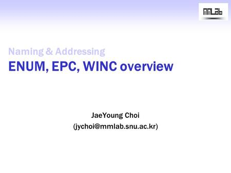 Naming & Addressing ENUM, EPC, WINC overview JaeYoung Choi
