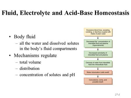27-1 Fluid, Electrolyte and Acid-Base Homeostasis Body fluid –all the water and dissolved solutes in the body's fluid compartments Mechanisms regulate.