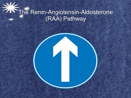 The Renin-Angiotensin-Aldosterone (RAA) Pathway. The First Stages Person is dehydrated, has a sodium ion deficiency or is hemorrhaging, any of these stimuli.