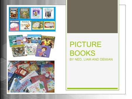 PICTURE BOOKS BY NED, LIAM AND DEMIAN. Introduction Picture books have many illustrations. Most of them are painted with water colours or drawn with pencil.