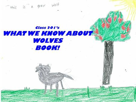 Wolves Class 201 PS 123 Class 201's WHAT WE KNOW ABOUT WOLVES BOOK!