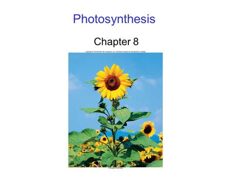 Photosynthesis Chapter 8. 2 Photosynthesis Energy for the majority of life on Earth ultimately comes from the sun through photosynthesis Photosynthesis.