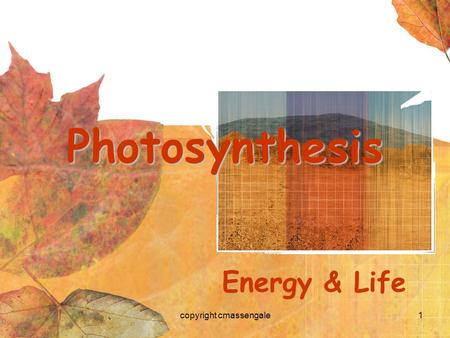 1 Photosynthesis Energy & Life copyright cmassengale.