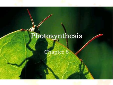 Photosynthesis Chapter 8. What is energy? the ability to do work.