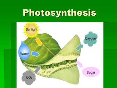 Photosynthesis. Energy Transformations ATP  is the energy molecule used in all living things, so supplies must be constantly replenished.  energy must.