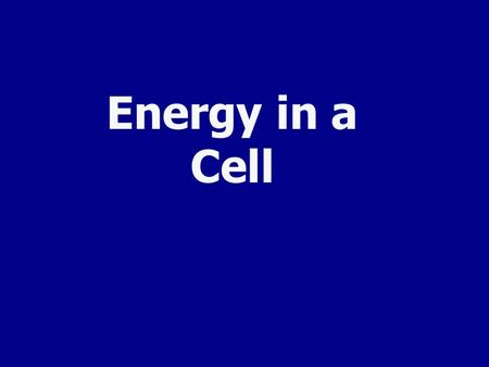 Energy in a Cell All Cells Need Energy Cells need energy to do a variety of work: Making new molecules. Building membranes and organelles. Moving molecules.