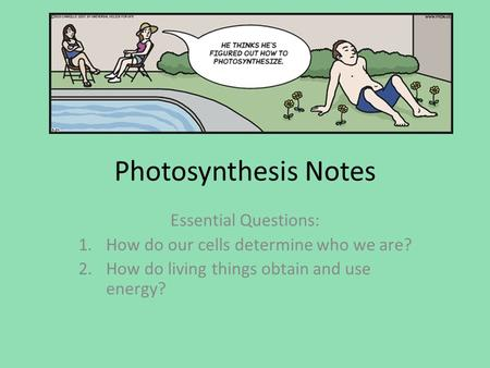 Photosynthesis Notes Essential Questions: 1.How do our cells determine who we are? 2.How do living things obtain and use energy?