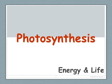 Photosynthesis Energy & Life copyright cmassengale.