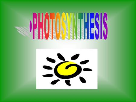 Photosynthesis Converts sunlight energy into chemical energy.