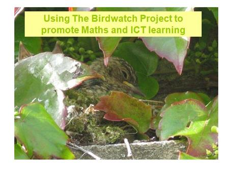 Using The Birdwatch Project to promote Maths and ICT learning.