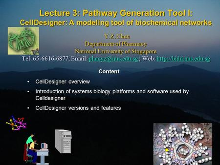 Lecture 3: Pathway Generation Tool I: CellDesigner: A modeling tool of biochemical networks Y.Z. Chen Department of Pharmacy National University of Singapore.